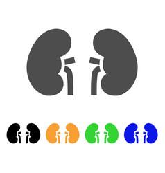 Kidneys flat icon vector