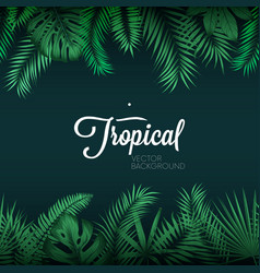 Tropical background with exotic green palm leaves vector