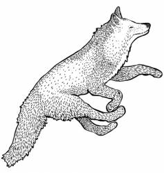 foxy fox vector image vector image