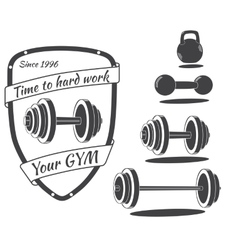 Set of monochrome gym equipment vector image vector image