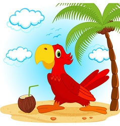 parrot on beach vector image