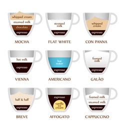Coffee types vector image
