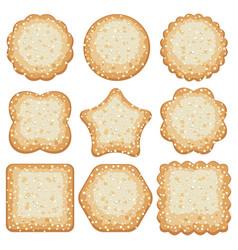 set sugar cookies vector image