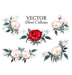 set vintage floral bouquet peonies vector image