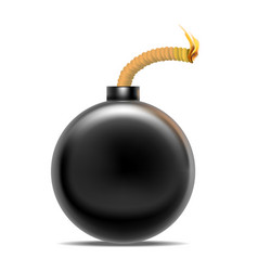 realistic detailed 3d bomb fire vector image