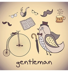 bird gentleman attributes dandy vector image