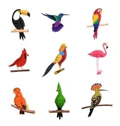 Exotic Birds Set vector image vector image