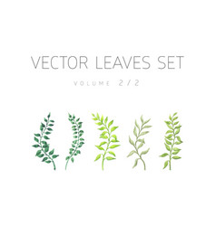 bright watercolor set of leaf vector image