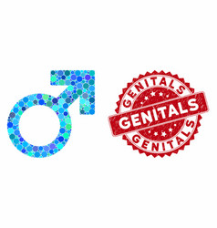Collage male symbol with distress genitals stamp vector
