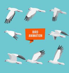 Key frames animation flying bird vector