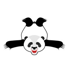 Bearskin panda chinese bear skin hunter trophy vector