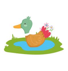 Duck in lake grass flowers farm animal cartoon vector