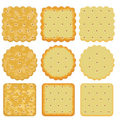 Set cracker chips vector