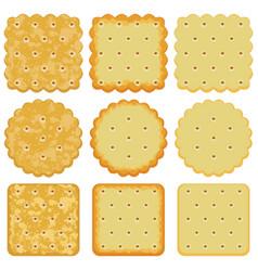 set of cracker chips vector image