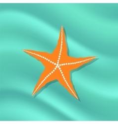 Caribbean starfish on azure background vector