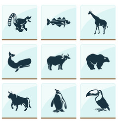 animal icons set with toucan penguin cod fish vector image