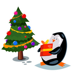 cute cartoon penguin with a gift box vector image