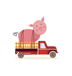 farming and agriculture concept with large pig in vector image