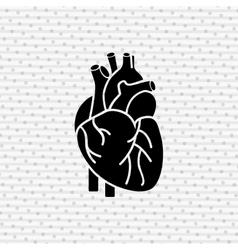human anatomy design vector image vector image