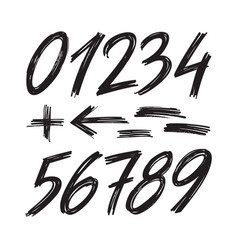 numbers sketch brush handwritten style design vector image