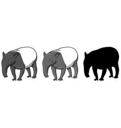 Set of tapir character vector