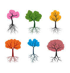 shape tree with colour leaves outline vector image