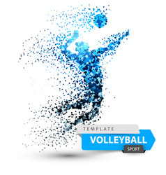 Volleyball dot on the white vector