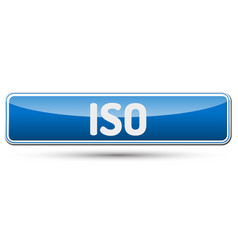 iso - abstract beautiful button with text vector image vector image