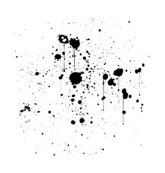 Black ink splatter background isolated on white vector
