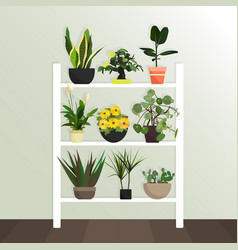 Collection of houseplants flat style vector