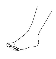 Human foot naked beautiful baby foot vector
