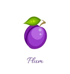 Purple plum icon vector