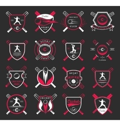 set badges cricket vector image