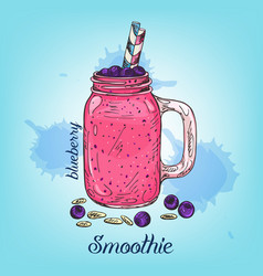 sketch of blueberry smoothie in jar isolated on vector image