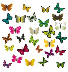 a collection of colorful butterflies vector image vector image