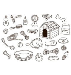 Set of accessories for dogs vector image vector image