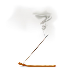 Aroma smoke reed sticks on wooden stand vector