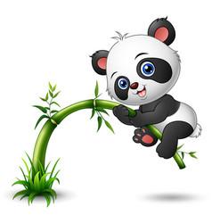Cute baby panda tree climbing bamboo vector