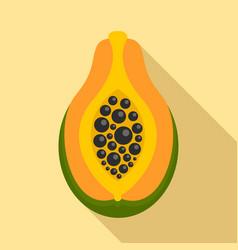 Exotic papaya fruit icon flat style vector