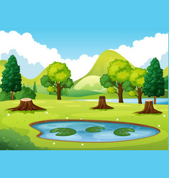 forest scene with little pond vector image
