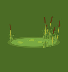 The marsh reeds and water vector