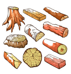 wood logs and stubs set natural wooden elements vector image