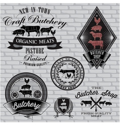 set of labels for Butcher on a brick wall vector image