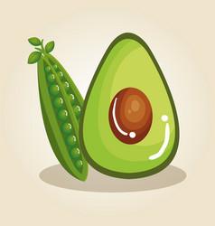 Fresh vegetables healthy food vector
