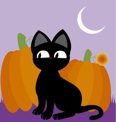 black cat 2 vector image