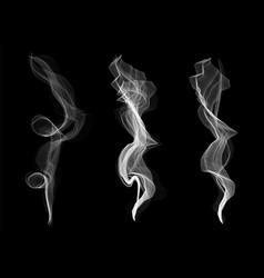 creative of delicate white vector image