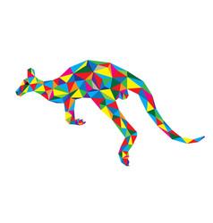 Geometric kangaroo vector