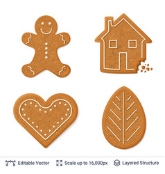 Gingerbread cookies isolated on white vector