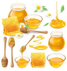 Set of of honey in honeycombs vector