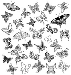 butterflies tattoo vector image